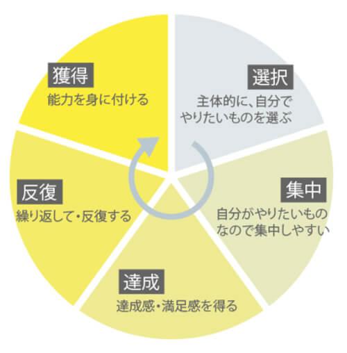 モンテッソーリ教育の学習のサイクル