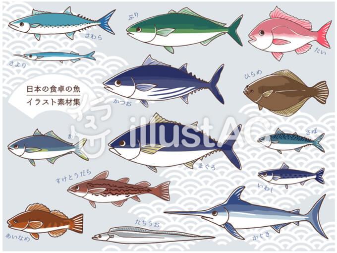 日本の魚のイラスト集