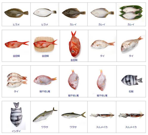 無料DTP素材 素材ページの魚