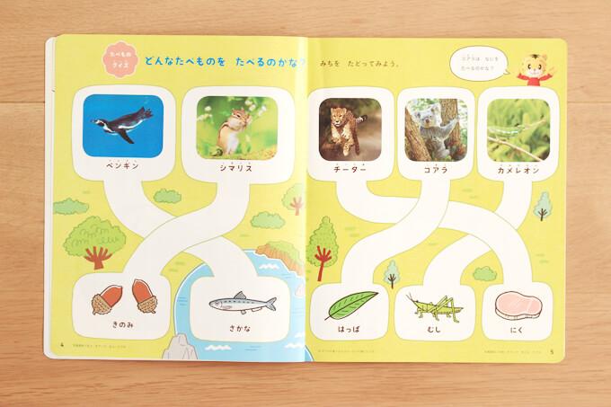 こどもちゃれんじほっぷ絵本で学ぶ動物の生態