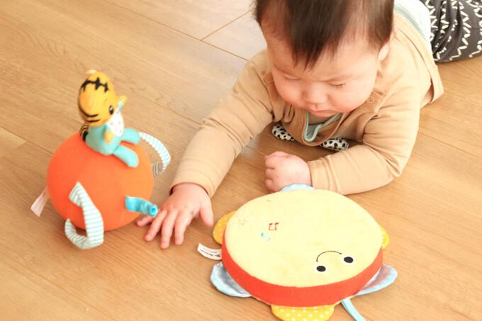 こどもちゃれんじベビーのエデュトイで遊ぶ赤ちゃん